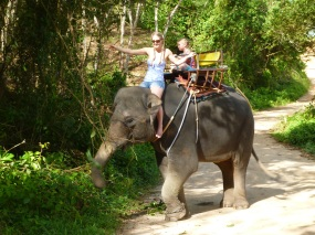 Image result for ELEPHANT RIDE