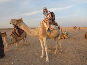 My sons on their camels