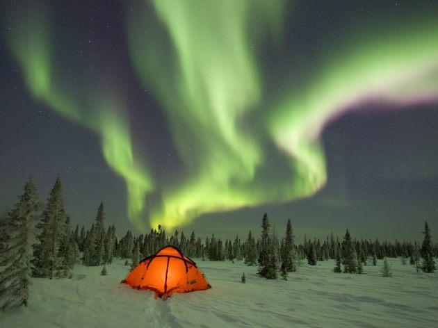 Northern Lights over orange tent